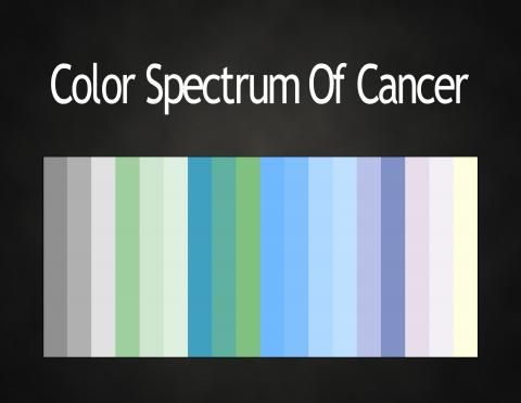 1000 images about cancer sun on pinterest cancer zodiac